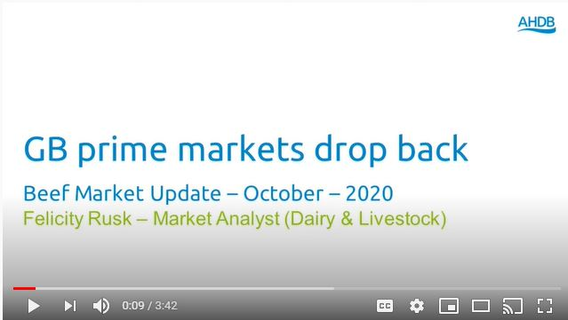 Beef market update video