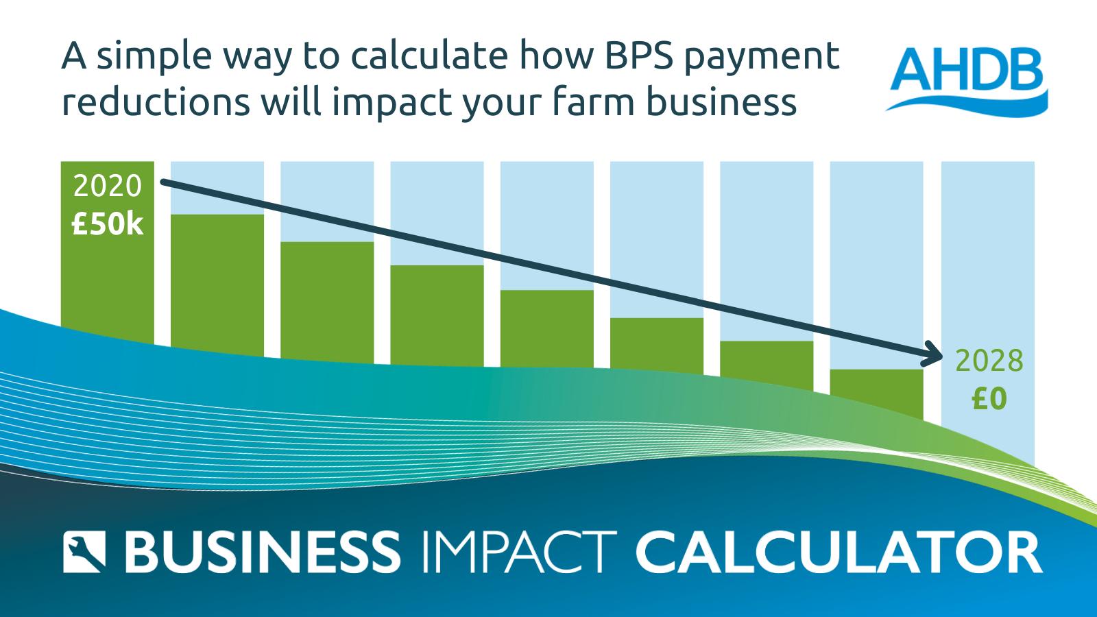 Business Impact Calculator