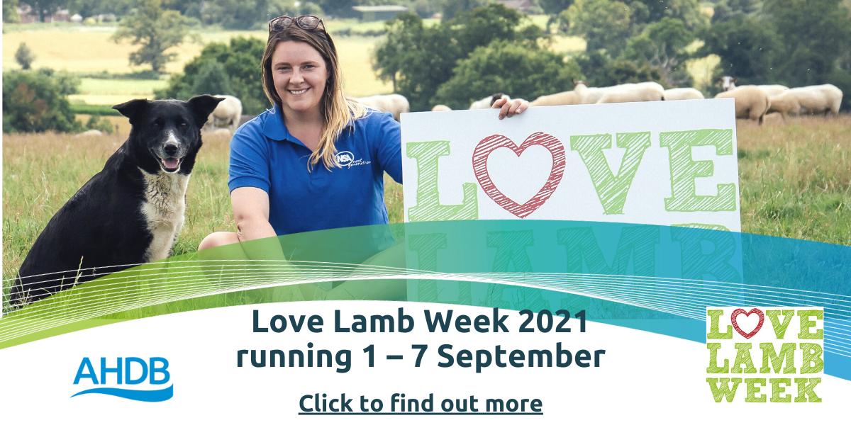 Love Lamb Week 2021