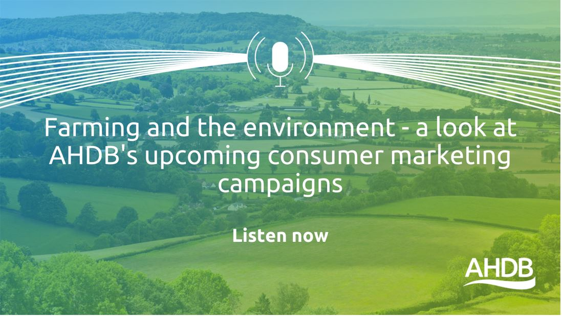 Listen to a podcast on AHDB's We Eat Balanced and Love Lamb Week marketing campaigns.